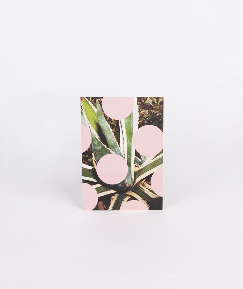 KAUF DICH GLÜCKLICH Postkarte Kaktus ros
