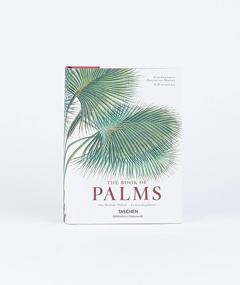 taschen book of palms. Black Bedroom Furniture Sets. Home Design Ideas