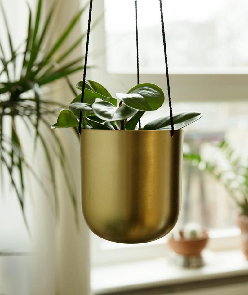BLOOMINGVILLE Flowerpot gold