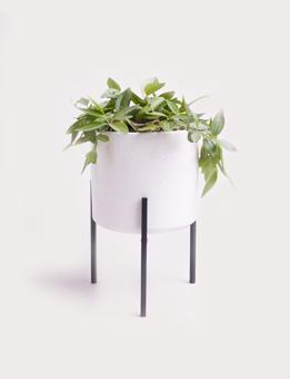 BLOOMINGVILLE Flowerpot