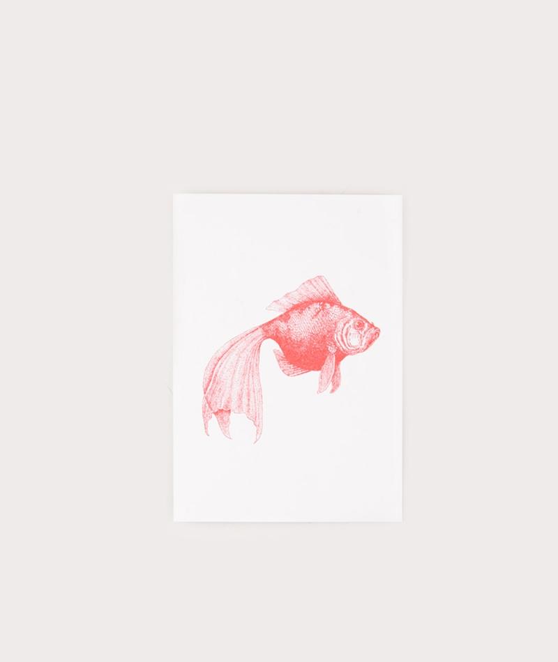 HERR UND FRAU RIO Fisch Postkarte