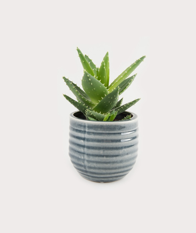BLOOMINGVILLE Flowerpot grey