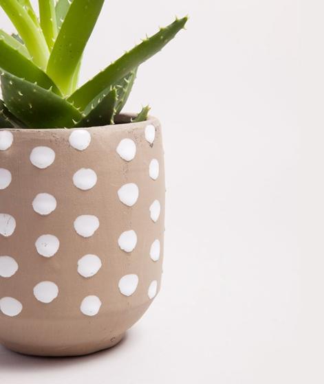 MADAM STOLTZ Flowerpot dots