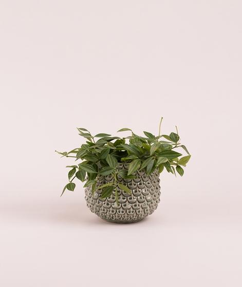 BLOOMINGVILLE Flowerpot green Ø16