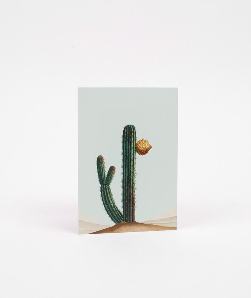30x40 Slide away Postkarte