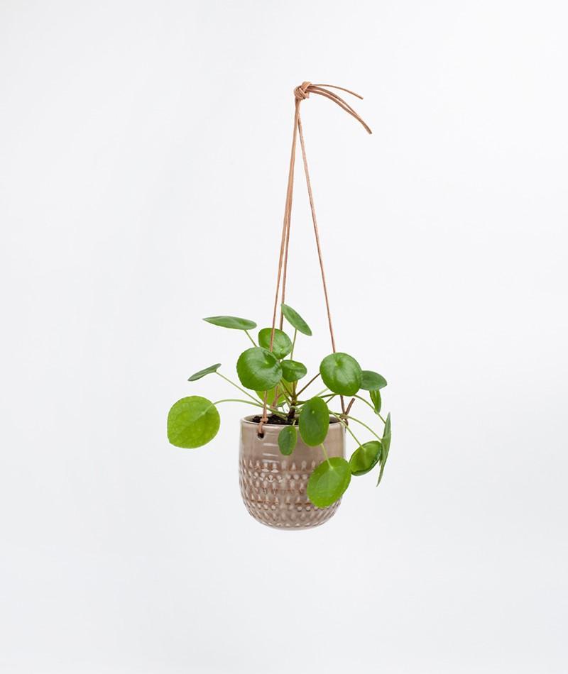 BLOOMINGVILLE Hanging Flowerpot nature