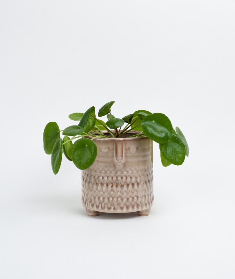 MADAM STOLTZ Flower Pot Face Imprint