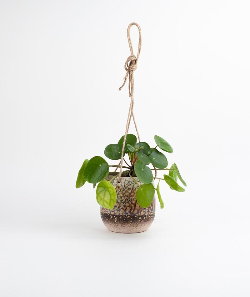 BLOOMINGVILLE Flowerpot Hanging NICHT