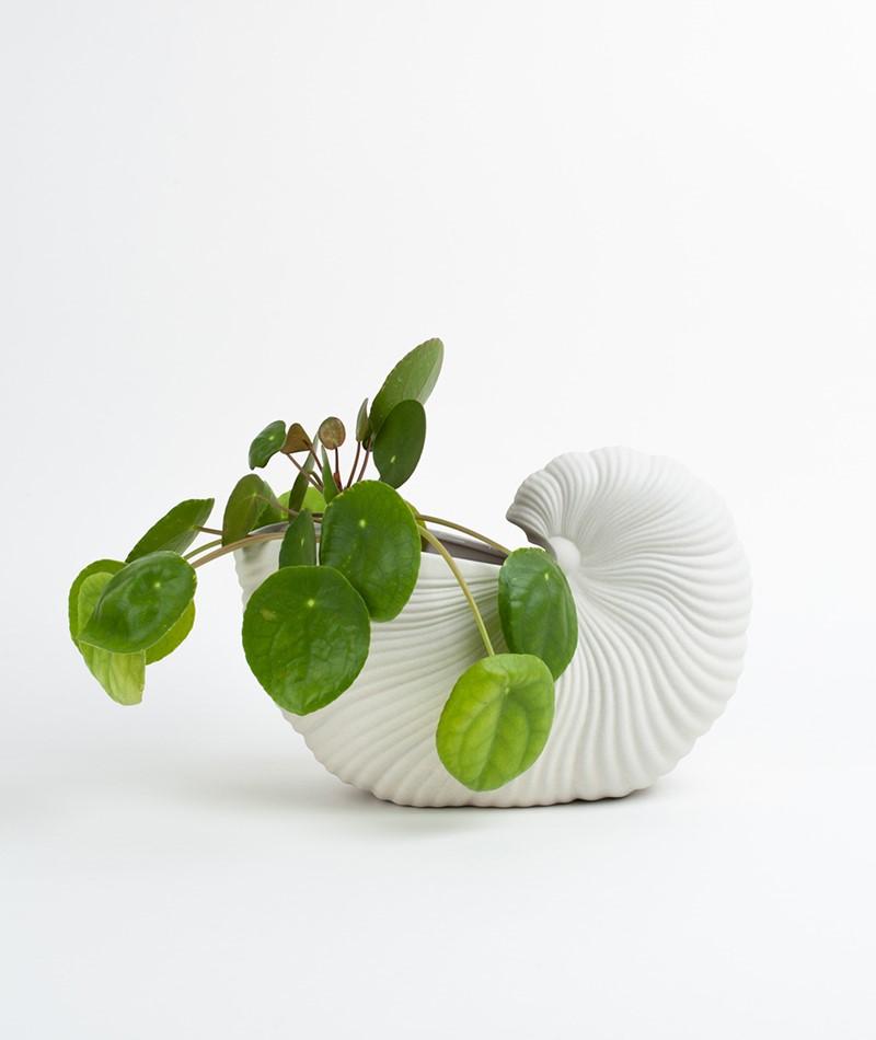 FERM LIVING Shell Pot off white