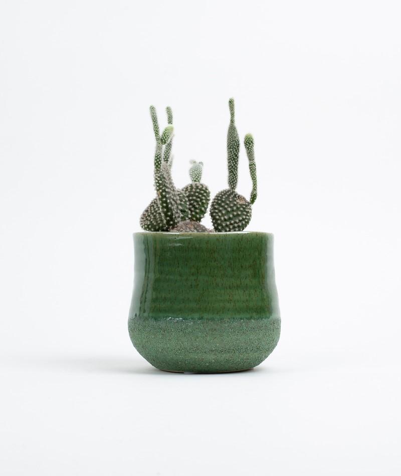 2HAVE Pot Grass grün