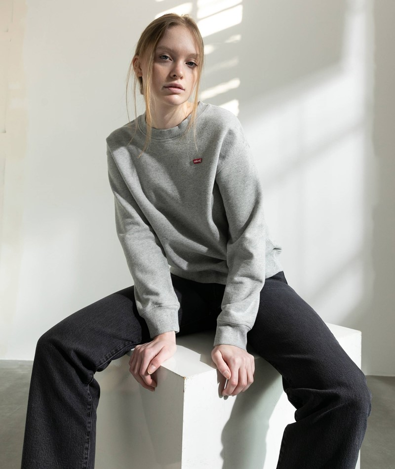 LEVIS Standard Crew Sweater grau