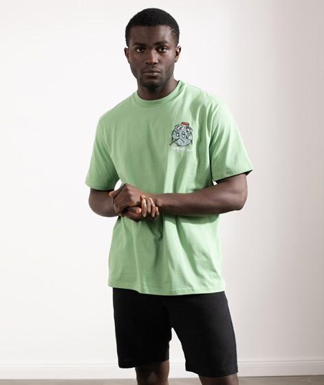 CARHARTT WorldT-Shirt grün