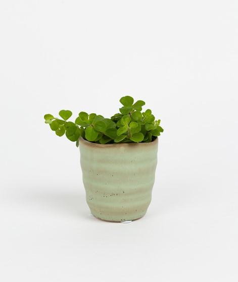 2HAVE Pot Room grün