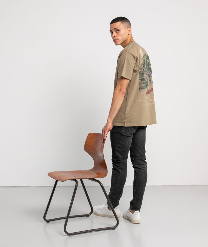 CARHARTT WIP Mountain T-Shirt braun